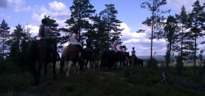 horseback riding in de natuur