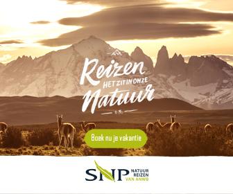SNP banner